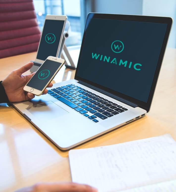 Servicio Winamic